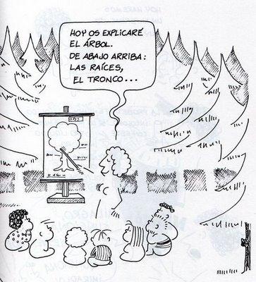 Frato demoledor blog de josechu ferreras for Arboles que no se le caen las hojas en invierno