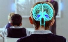 neuroeducacion (1)